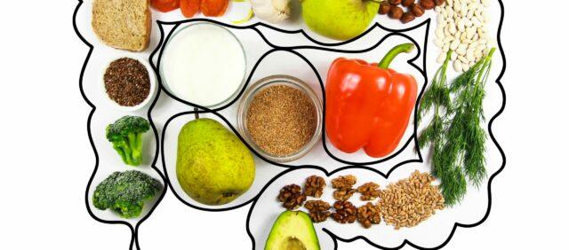 Bild für den Artikel: Das Mikrobiom und die darmfreundliche Ernährung