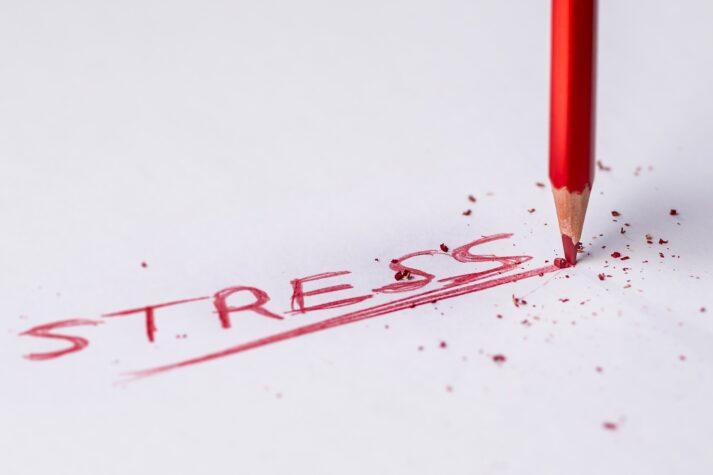 Bild für den Artikel: Workshop: Meine Strategie, wenn es stressig wird!