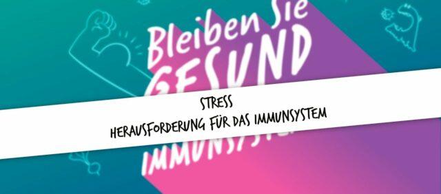 Bild für den Artikel: Stress- Herausforderung für das Immunsystem